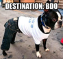 Destination BDO